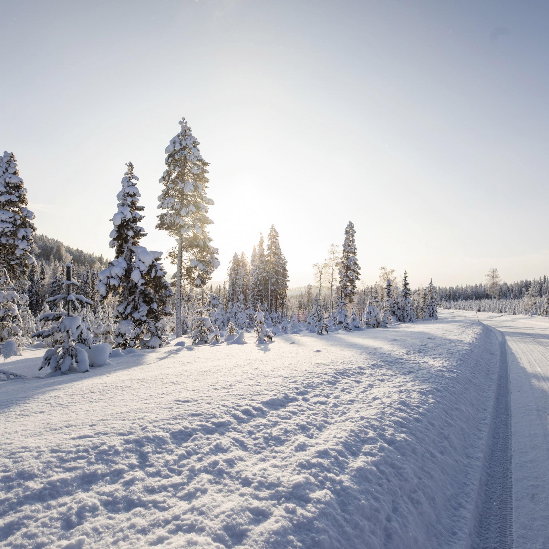 Blende schließen für hohe Schärfentiefe, Winterfotografie