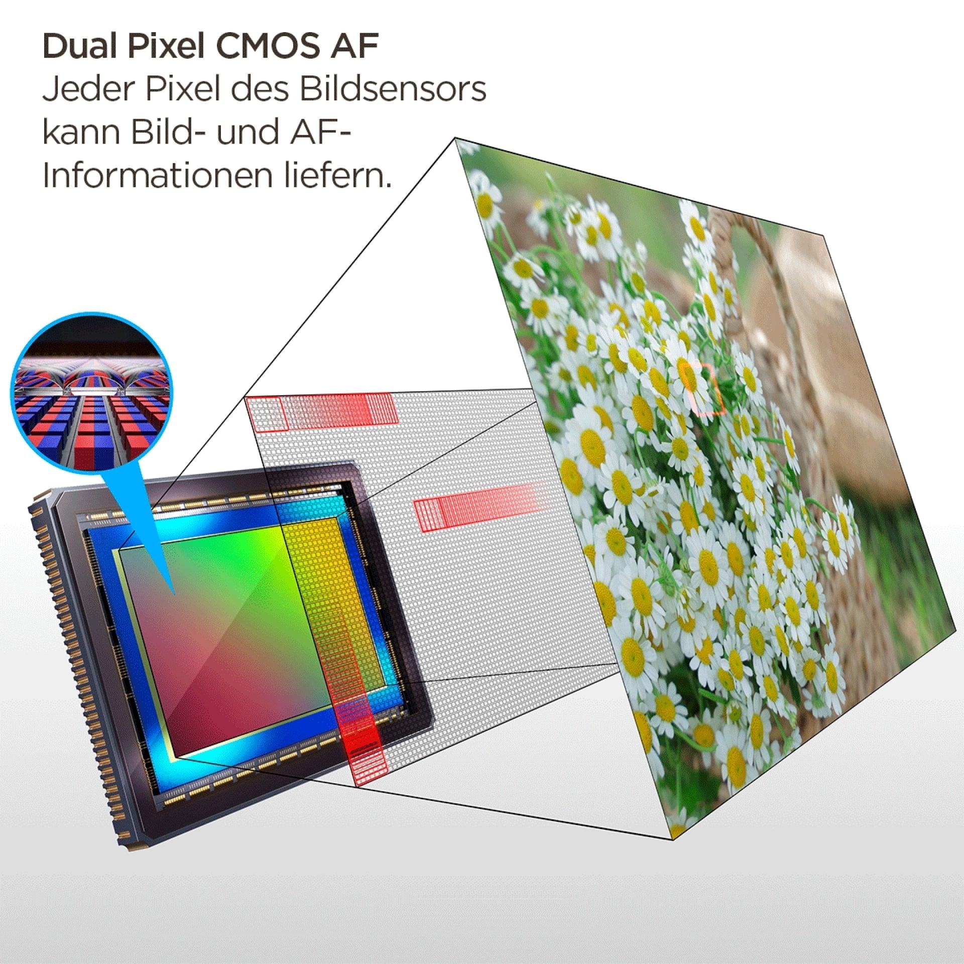 Dual Pixel CMOS AF Technologie, EOS R-System