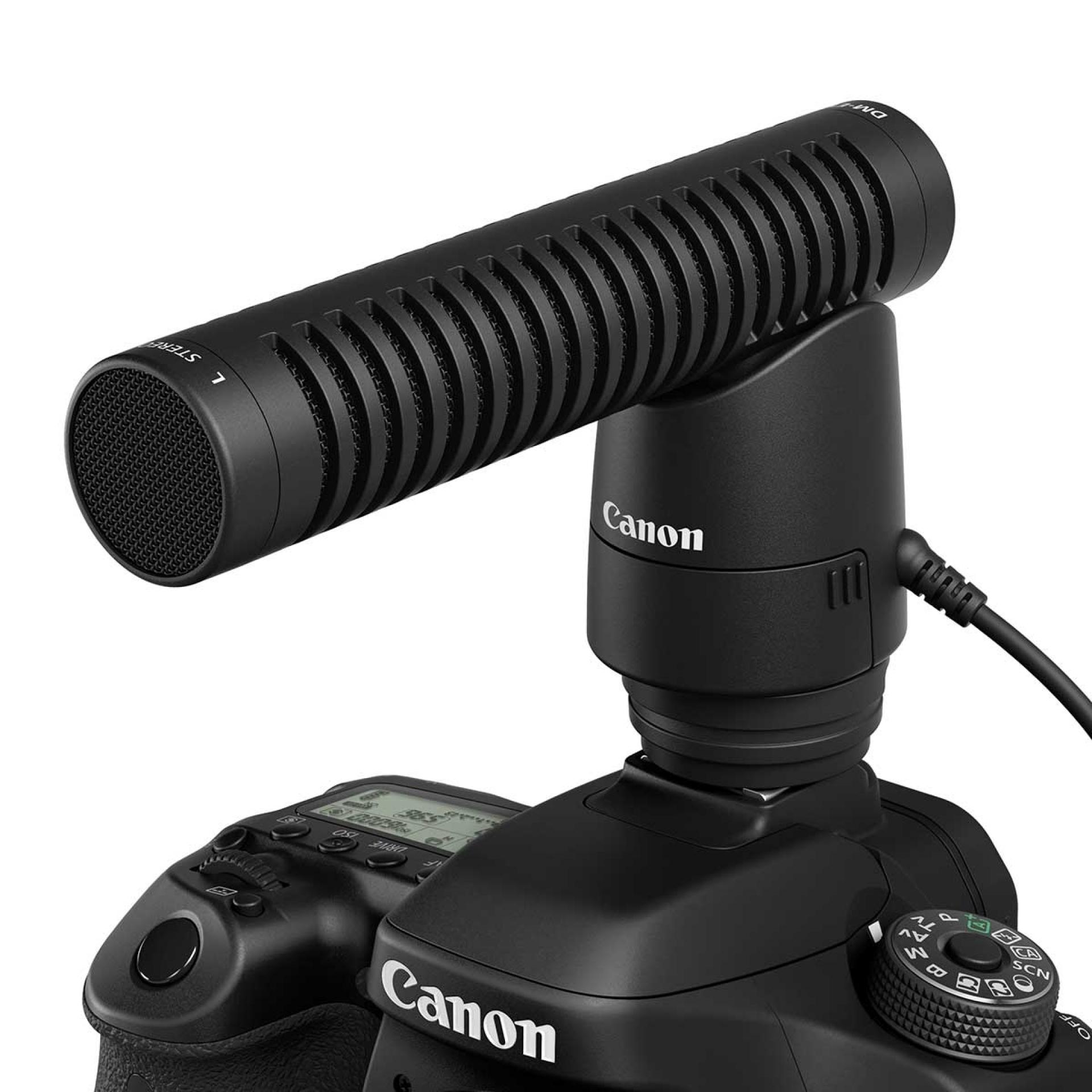 Canon, Filmen mit der EOS, Ton, externes Mikrofon