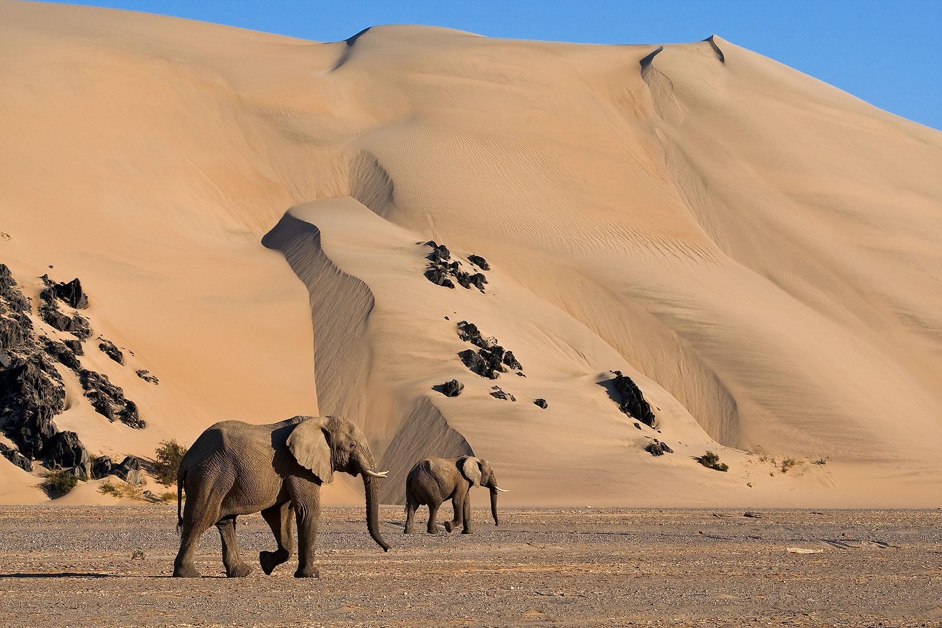 Namibia - Canon Academy Landschaft- und Reise
