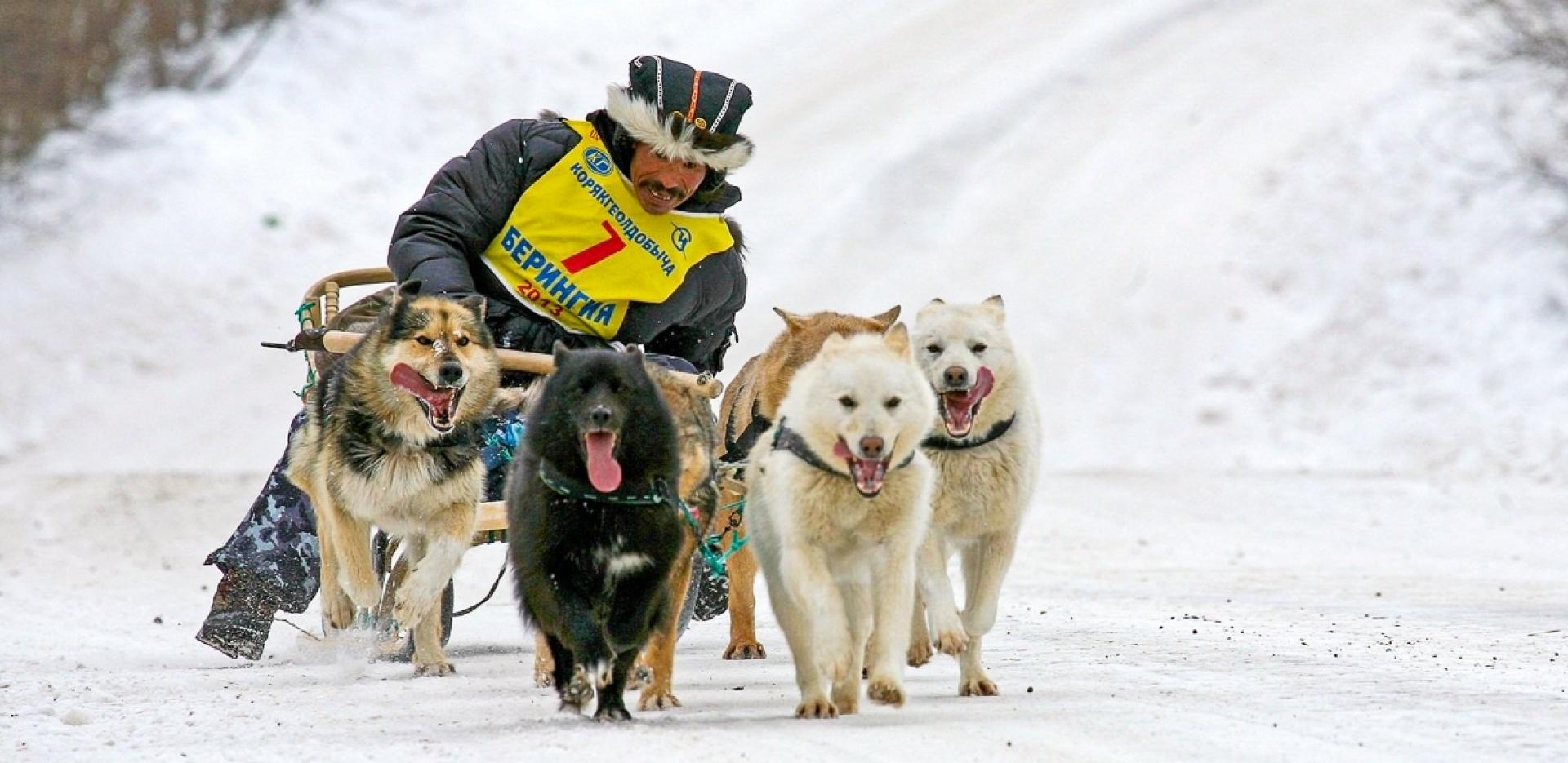 Schlittenhunderennen Bad Hindelang - Canon Academy Sport